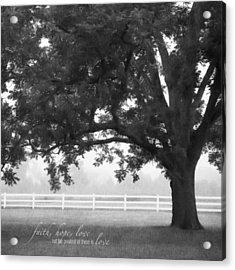 Country Fence Acrylic Print by Mary Hershberger