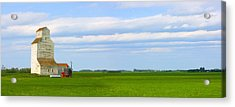 Country Grain Elevator Panoramic Acrylic Print by Corey Hochachka