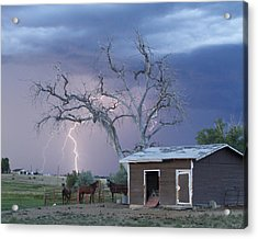 Country Horses Lightning Storm Ne Boulder County Co  Crop Acrylic Print by James BO  Insogna