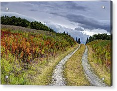 Acrylic Print featuring the photograph Country Road In Fall by Michele Cornelius