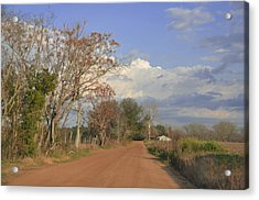 Country Road Acrylic Print by Jan Amiss Photography