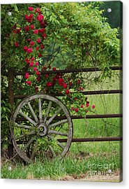 Acrylic Print featuring the photograph Country Simplicity by Julie Clements