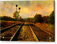Country Tracks Acrylic Print by Kathy Jennings