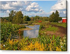 Acrylic Print featuring the photograph Countryside by Cindy Haggerty