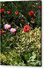 County Line Garden Acrylic Print