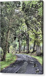 County Roads Acrylic Print by JC Findley