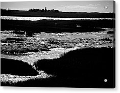 Covering The Marshes Acrylic Print by Jez C Self