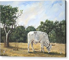 Acrylic Print featuring the painting Cow by AnnaJo Vahle