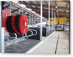 Cow Brush In A Cowshed Acrylic Print by Jaak Nilson