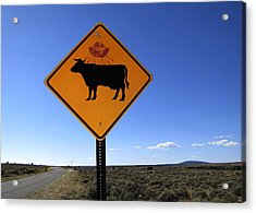 Cow Ufo Road Sign  Acrylic Print by Ann Powell
