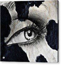 Cow Acrylic Print by Yosi Cupano