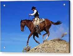 Cowboy Acrylic Print by George D Lepp and Photo Researchers