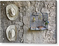 Acrylic Print featuring the photograph Cowboy Hats And Parakeets by Craig Lovell