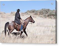 Cowboy On Horseback Acrylic Print by Cindy Singleton