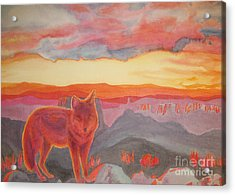 Coyote Cliff Acrylic Print by Vikki Wicks