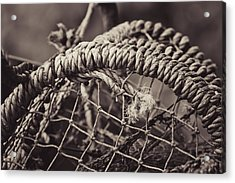 Acrylic Print featuring the photograph Crab Cage by Justin Albrecht
