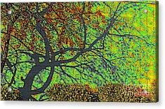 Crabapples West Acid Pop Acrylic Print by Feile Case
