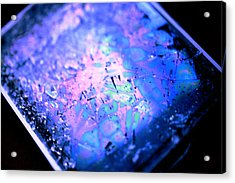 Cracked Cellphone Acrylic Print by Will Czarnik