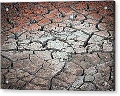 Cracked Earth Acrylic Print by Athena Mckinzie