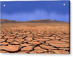 Cracked Earth Acrylic Print by Tim Stringer