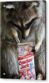 Cracker Jack Acrylic Print