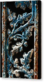 Crackled Coats Acrylic Print by Christopher Holmes