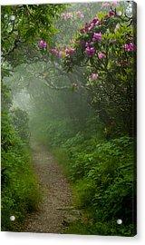 Craggy Path 2 Acrylic Print