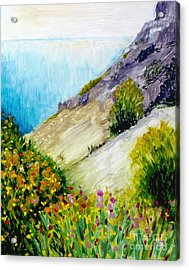 Crags And Wildflowers Of Monaco Acrylic Print by Hilary England
