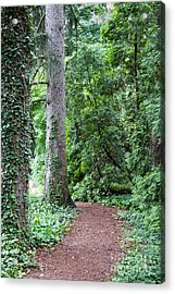 Cranbrook College Botanical Gardens Acrylic Print by Linda Gardner-Goos