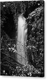 Cranny Falls Waterfall Carnlough County Antrim Northern Ireland Uk Acrylic Print by Joe Fox