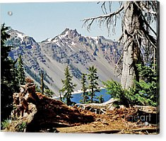 Crater Lake Through Nature Acrylic Print by Mike Stone