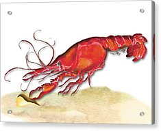 Acrylic Print featuring the painting Crawfish by Anne Beverley-Stamps