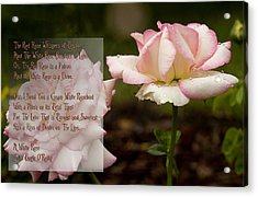 Cream White Rosebud With Poem Acrylic Print