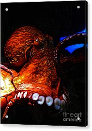 Creatures Of The Deep - The Octopus - V6 - Orange Acrylic Print by Wingsdomain Art and Photography