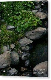 Creek Flow Panel 2 Acrylic Print by Peter Piatt