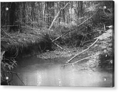 Creek Acrylic Print by Floyd Smith