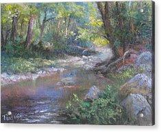 Creek Study Acrylic Print