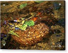 Creekside Acrylic Print by Sharon Talson