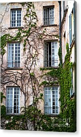 Acrylic Print featuring the photograph Creeping Vines by Kim Wilson