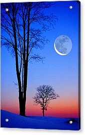 Crescent Through Trees Acrylic Print