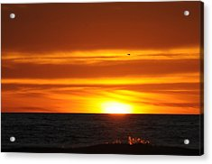 Crimson Sunset Acrylic Print