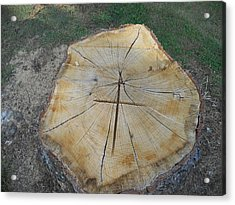Acrylic Print featuring the photograph Cross In The Wood by Diannah Lynch