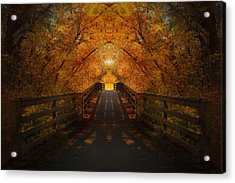 Crossing Over - Color Acrylic Print