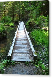 Crossing Over Acrylic Print by Kathy Bassett