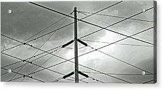 Crossing The Lines Acrylic Print