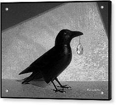 Crow With Crystal 7 Acrylic Print