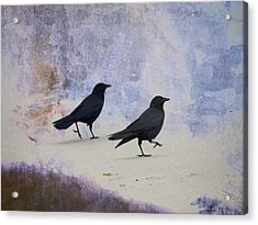 Crows Walking On The Beach Acrylic Print