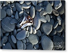 Crushed Can In Rocks Acrylic Print by Dave & Les Jacobs