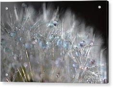 Crystal Flower Acrylic Print by Sylvie Leandre