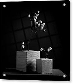 Cubicle Flowers - Gray Variations Acrylic Print by Ovidiu Bastea